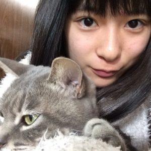 芳根京子 家族構成 猫