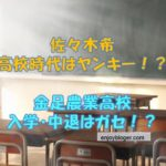 佐々木希の高校時代の写真が可愛すぎる!高校はどこ?中退の真相!
